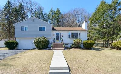 Wellesley Single Family Home For Sale: 7 Ashmont Rd