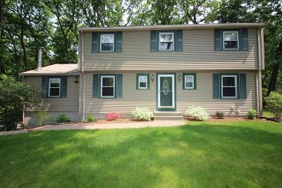 Framingham Single Family Home For Sale: 19 Montgomery Dr