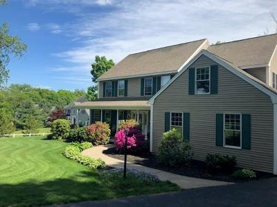 Southborough Single Family Home For Sale: 9 Hillside Avenue