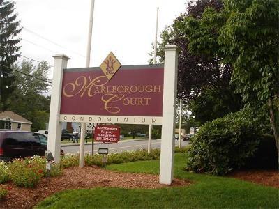 Marlborough Condo/Townhouse For Sale: 37 Hosmer St #23