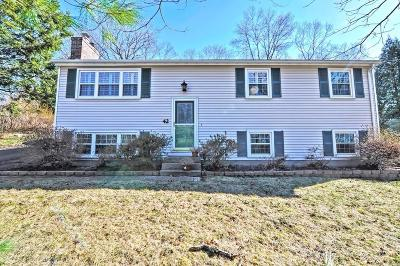 Southborough Single Family Home For Sale: 42 Atwood St