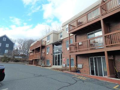 Marlborough Condo/Townhouse For Sale: 110 Boston Post Road East #106