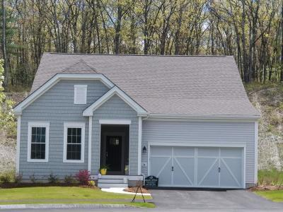 Holliston Single Family Home For Sale: 74 Jackson Drive #66