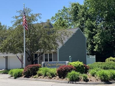 Ludlow Condo/Townhouse Price Changed: 58 Chapin Greene Dr #58
