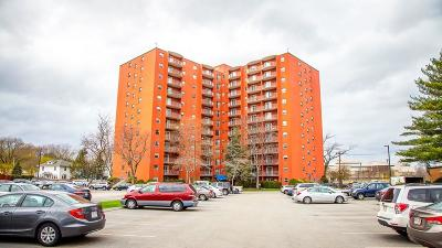 Quincy Condo/Townhouse New: 115 W Squantum St #1211