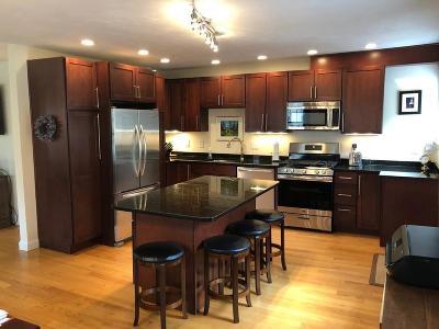 Concord Single Family Home New: 191 Conant St
