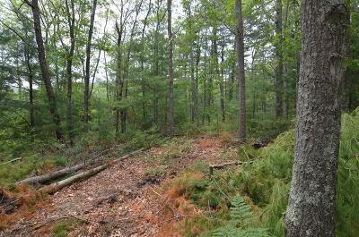 Plymouth Residential Lots & Land For Sale: 221 Beaver Dam Road