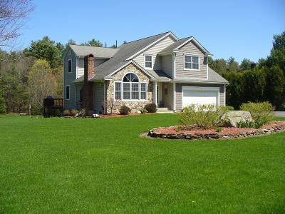 Belchertown Single Family Home For Sale: 377 Bardwell Street