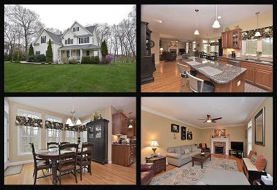North Attleboro Single Family Home For Sale: 27 Robert V Beaupre Circle