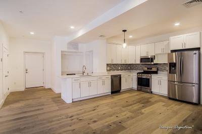 Billerica, Chelmsford, Lowell Condo/Townhouse For Sale: 36 Prescott #205