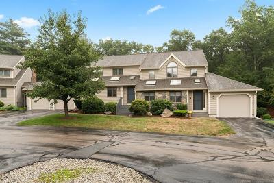 Franklin Condo/Townhouse For Sale: 9 Birch Tree Circle #9