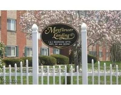 Middleboro Rental For Rent: 66 Mayflower Ave #16