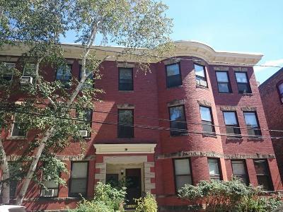 Brookline Rental For Rent: 19 Netherlands Rd #3