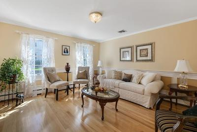 Winchester Single Family Home Price Changed: 2 Alben Street