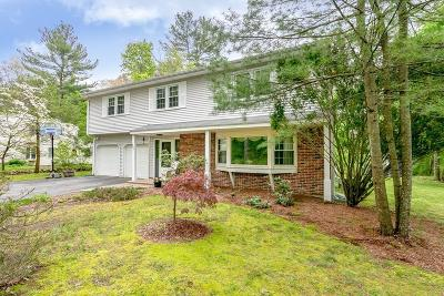 Holliston Single Family Home For Sale: 683 Winter St