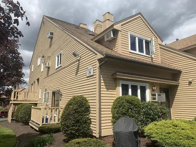 Methuen, Lowell, Haverhill Condo/Townhouse New: 49 Casablanca Ct #49
