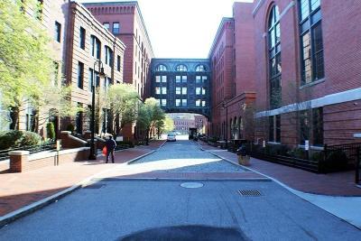 Boston Rental New: 1245 Adam #208