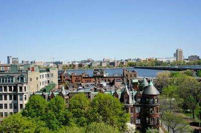 Boston Rental New: 466 Commonwealth Ave #507