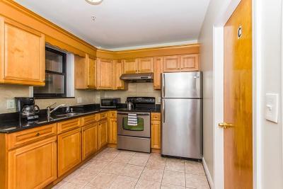 Boston Rental New: 106 Tyler St #3