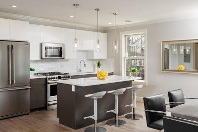 Cohasset, Weymouth, Braintree, Quincy, Milton, Holbrook, Randolph, Avon, Canton, Stoughton Condo/Townhouse New: 9 Independence Ave #105