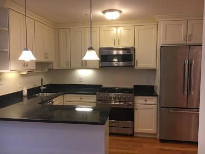 Boston, Cambridge Rental New: 668 Massachusetts #G