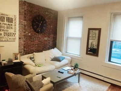 Boston, Cambridge Rental New: 36 East Springfield St #1