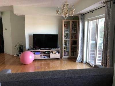 Boston, Cambridge Rental New: 655 Concord Ave #203