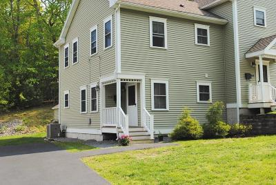 Needham Condo/Townhouse For Sale: 258 Linden #258