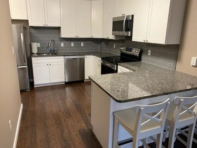 Watertown Condo/Townhouse For Sale: 164 Galen St #52
