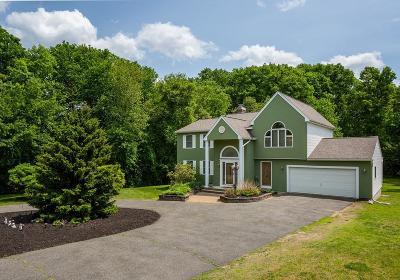 Ludlow Single Family Home For Sale: 252 Elizabeth Dr