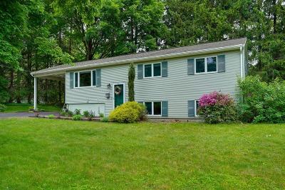 Holliston Single Family Home For Sale: 13 Carlton Dr