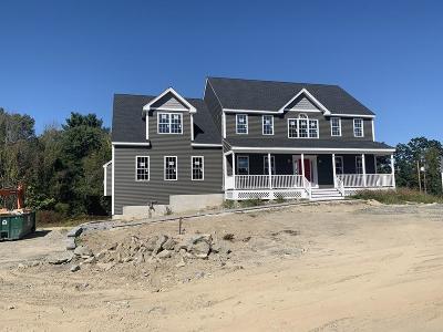 Holliston Single Family Home For Sale: 233 Prentice