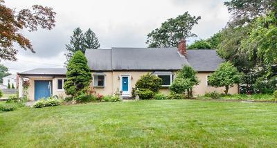 Framingham Single Family Home For Sale: 173 Winter St