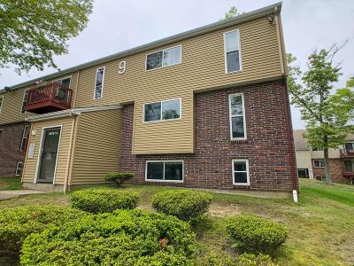 Plymouth Condo/Townhouse For Sale: 9 Tideview Path #3