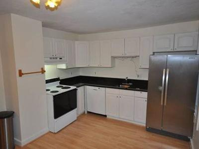 Framingham Condo/Townhouse New: 3 Ellis St #B