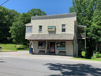MA-Worcester County Commercial For Sale: 236 Park St