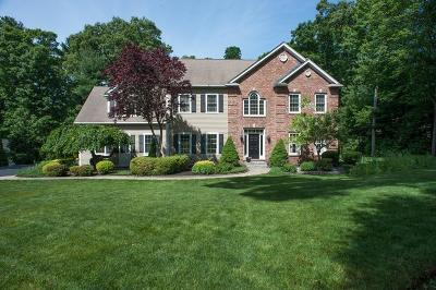 Northbridge Single Family Home For Sale: 132 Eben Chamberlain Rd