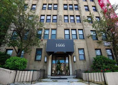 Condo/Townhouse New: 1666 Commonwealth #41