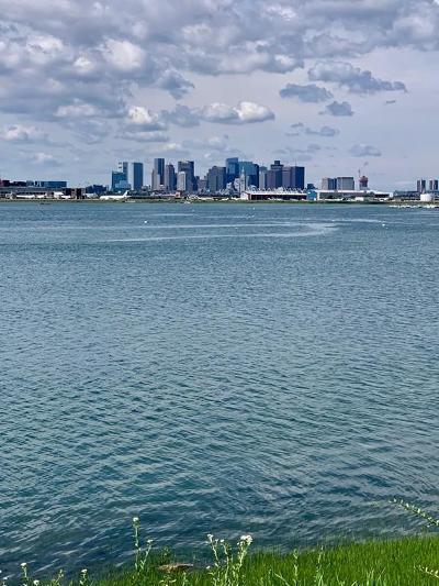 Boston MA Multi Family Home New: $1,099,999