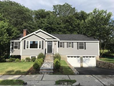 Newton Single Family Home For Sale: 204 Dedham Street