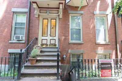 Boston Condo/Townhouse New: 46 East Springfield St #2