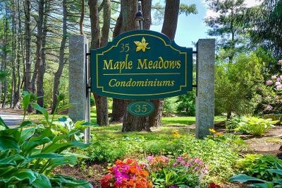 Sudbury Condo/Townhouse For Sale: 35 Maple Ave #102