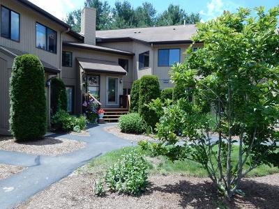 Ashland Condo/Townhouse For Sale: 235 Trailside Way #B