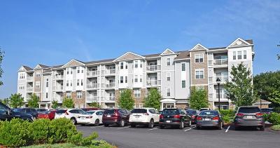 Weymouth MA Condo/Townhouse New: $339,900