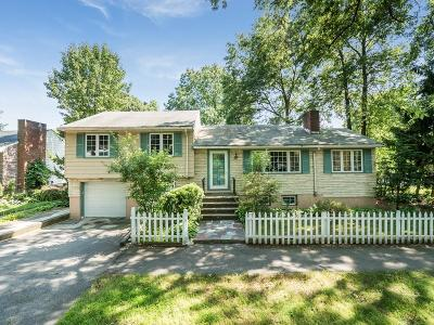 Brookline Single Family Home For Sale: 466 Vfw Pkwy