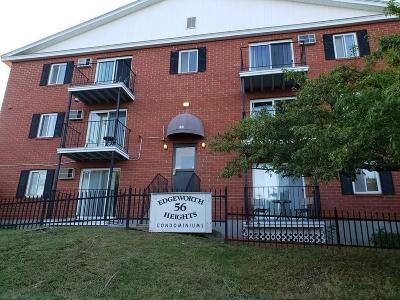 Worcester Condo/Townhouse Under Agreement: 56 Edgeworth St #17
