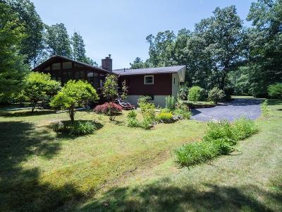 Tewksbury Single Family Home For Sale: 14 Mount Joy Drive