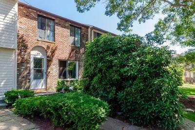Bourne Condo/Townhouse New: 602 Village Drive #602
