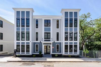 Boston Condo/Townhouse New: 161 Leyden Street #1A