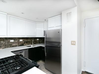 Condo/Townhouse New: 151 Tremont St #18T